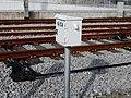 Estação de Castelo Branco (39927772511).jpg