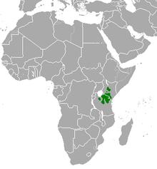 thomson s gazelle wikipedia