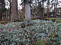 Eugene Masonic Cemetery in Eugene, Oregon (2013) - 20.JPG