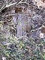 Ex cava Spinazzola, formazione rocciosa (Rovolon) 06.jpg