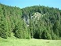 Ezen szilafal tövében tör fel a Ponor patak - panoramio.jpg