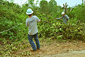 FEMA - 44314 - Utility Equipment and workers in Oklahoma.jpg