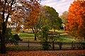 Fall Colors at Lakewood Cemetery, Minneapolis (49117694762).jpg