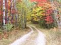 Fall colors - panoramio (1).jpg