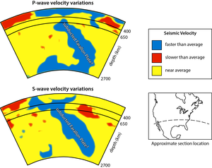 Seismic tomography - Simplified and interpreted P- and S-wave velocity variations in the mantle across southern North America showing the subducted Farallon Plate.