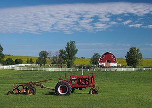 Pope County, Minnesota - A farm in Chippewa Falls Township