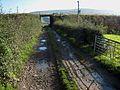 Farm road at Macrindlestone, near Girvan - geograph.org.uk - 262942.jpg