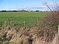 Farmland South of Skirpenbeck - geograph.org.uk - 125996.jpg