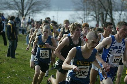 The New York State Federation Championship cross country meet Fedshalfmile.jpg