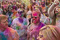 Festival Of Colors (65380541).jpeg