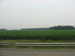 Fields and woods in northern Groton Township