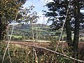 Fields by Bulverton Hill - geograph.org.uk - 1000494.jpg