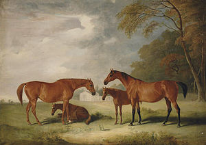 Charlotte West (horse) - Filigree and her Daughter Cobweb, with Foals in a Landscape by John Ferneley c. 1827. The foal on the ground is probably Charlotte West