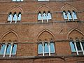 Finestres del Palau Sansedoni de Siena.JPG