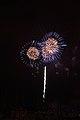 Fireworks - July 4, 2010 (4773138539).jpg