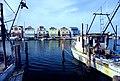 Fish1581 - Flickr - NOAA Photo Library.jpg