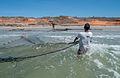 Fish in El Manglillo with cast net.jpg