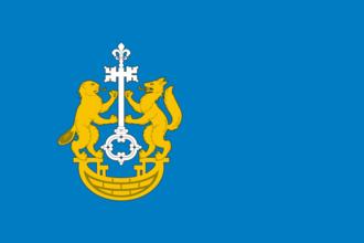 Tyumensky District - Image: Flag of Tyumensky rayon (Tyumen oblast)