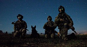 3rd Ranger Battalion (United States) - Rangers from the 3rd Ranger Battalion during a nighttime combat mission in Afghanistan, 6 March 2012.