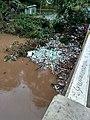 Flood kerala 2018.jpg