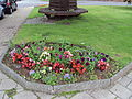 Flowerbed on the village green, Christleton, Cheshire - DSC07962.JPG
