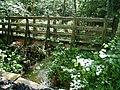 Footbridge over the Cayo Brook - geograph.org.uk - 478734.jpg