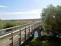 Footbridge over the River Dearne. - geograph.org.uk - 557374.jpg
