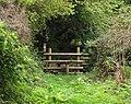 Footpath in Cwm Ysgiach near Felindre - geograph.org.uk - 242468.jpg