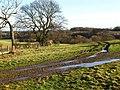Footpath near Crow House - geograph.org.uk - 1129472.jpg