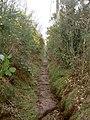 Footpath near Irby Quarry. - geograph.org.uk - 725405.jpg