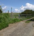 Footpath past Ffynnonfelen - geograph.org.uk - 1352325.jpg