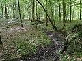 Forêt de Mormal - Nerviens 04.jpg