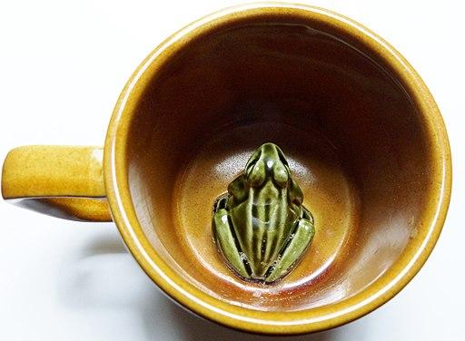 Frog or Surprise mug