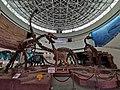 Fujian Nature Museum Dinosaurs.jpg