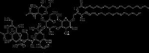 GD2 - Image: GD2 ganglioside
