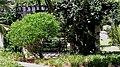 Garden view 2 - panoramio.jpg