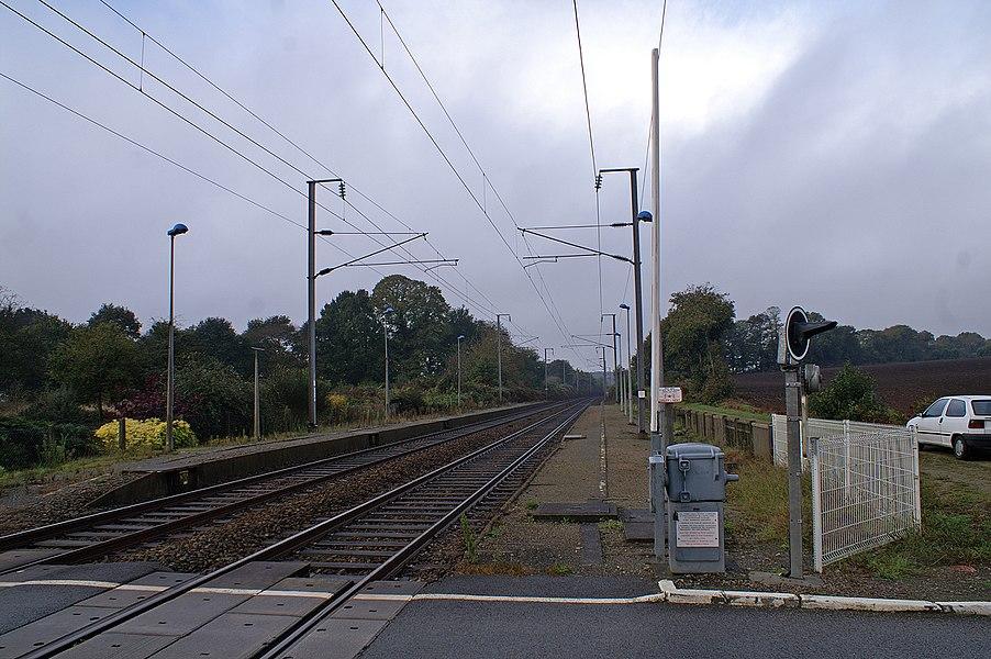 Voies et quais de la gare de La Vraie-Croix en 2009.
