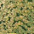 GdeBodenkirchen Luftbild.png
