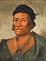 George Catlin - Ko-mán-i-kin, Big Wave, an Old and Distinguished Chief - 1985.66.228 - Smithsonian American Art Museum.jpg