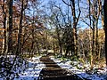 Georgia snow IMG 5096 (38061498345).jpg