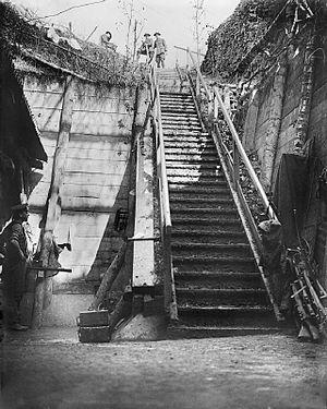 Capture of Trônes Wood - Image: German dugout steps Bernafay Wood Somme 1916 IWM Q 4307
