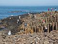 Giant's Causeway Antrim Küste Nordirland@20160529 02.jpg