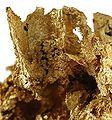 Gold-tuc09100c.jpg