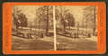 Golden Fish fountain, Fairmount Park, from Robert N. Dennis collection of stereoscopic views 2.png
