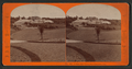 Golden Gate Park, San Francisco, Cal, from Robert N. Dennis collection of stereoscopic views 2.png