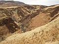 Gorge above Turrerich - geograph.org.uk - 157455.jpg
