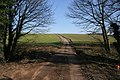 Green Lane near Eaton - geograph.org.uk - 694188.jpg