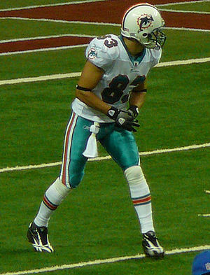 Greg Camarillo - Camarillo with the Dolphins in 2009.