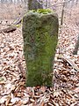 Grenzstein Beiburg Nr. 50 Seite 1.jpg