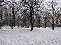 Großer Garten, Dresden in winter (1059).jpg